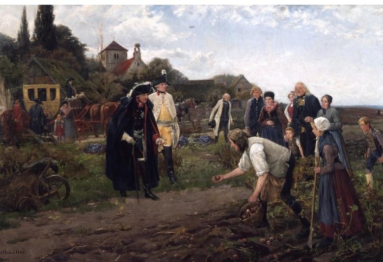 In Preussen und Russland wurde der Anbau von Kartoffel befohlen